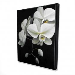 Framed 48 x 60 - 3D - White orchids