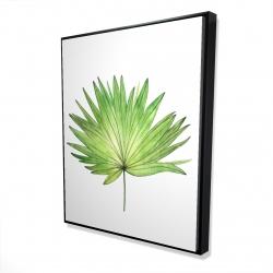 Framed 48 x 60 - 3D - Petticoat palm