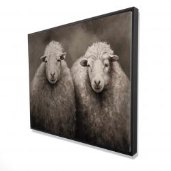 Framed 48 x 60 - 3D - Sheep sepia