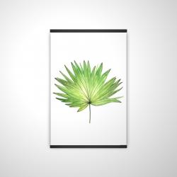 Magnetic 20 x 30 - 3D - Petticoat palm