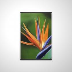 Magnetic 20 x 30 - 3D - Bird of paradise flower