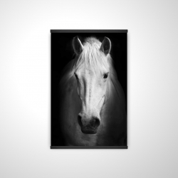 Magnetic 20 x 30 - 3D - Monochrome horse