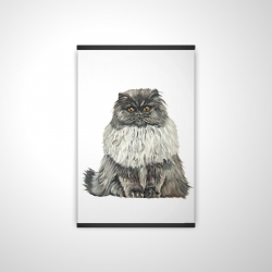 Blue gray persian cat