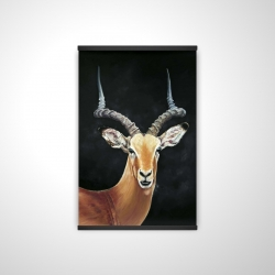 Magnetic 20 x 30 - 3D - Antelope