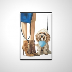 Magnetic 20 x 30 - 3D - Fashionable cavoodle dog