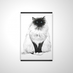 Magnetic 20 x 30 - 3D - Blue eyes fluffy siamese cat
