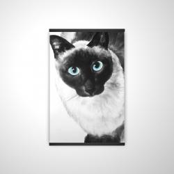 Magnetic 20 x 30 - 3D - Blue eyes siamese cat