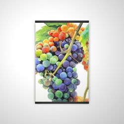 Magnetic 20 x 30 - 3D - Colorful bunch of grapes