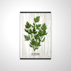 Magnetic 20 x 30 - 3D - Cilantro on wood