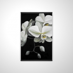 Magnetic 20 x 30 - 3D - White orchids