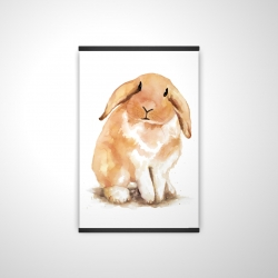Magnetic 20 x 30 - 3D - Lop-rabbit
