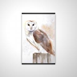 Magnetic 20 x 30 - 3D - Barn owl