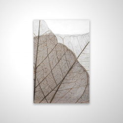 Magnetic 20 x 30 - 3D - Translucent dried leaves