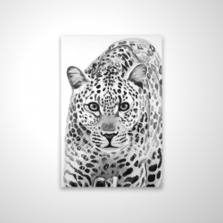Magnetic 20 x 30 - 3D - Leopard ready to attack