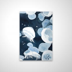 Magnetic 20 x 30 - 3D - Jellyfishs