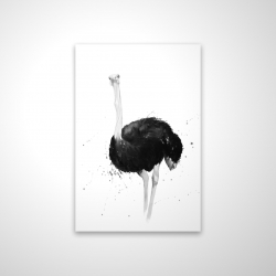 Magnetic 20 x 30 - 3D - Ostrich in watercolor