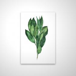 Magnetic 20 x 30 - 3D - Bay leaves bundle