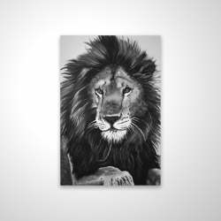 Magnetic 20 x 30 - 3D - The lion king