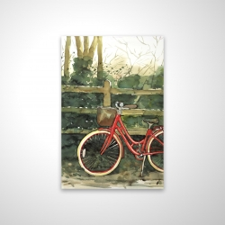 Riding in the woods by bicycle