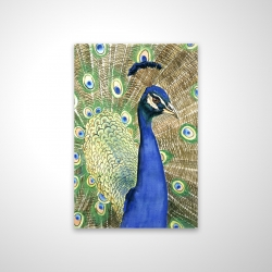Magnetic 20 x 30 - 3D - Peacock