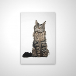 Magnetic 20 x 30 - 3D - Maine coon cat