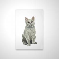 Magnetic 20 x 30 - 3D - British shorthair cat