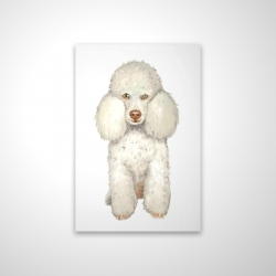 Magnetic 20 x 30 - 3D - French poodle