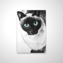 Magnetic 20 x 30 - 3D - Blue eyes siamese cat
