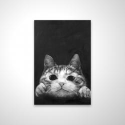 Magnetic 20 x 30 - 3D - Curious cat