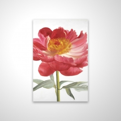 Magnetic 20 x 30 - 3D - Pink peony