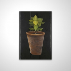 Magnetic 20 x 30 - 3D - Plant of bay leaves