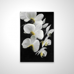Magnetic 20 x 30 - 3D - Beautiful orchids