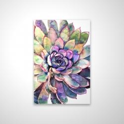 Magnetic 20 x 30 - 3D - Multicolored succulent