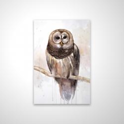 Magnetic 20 x 30 - 3D - Barred owl
