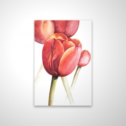 Magnetic 20 x 30 - 3D - Blossoming tulips closeup