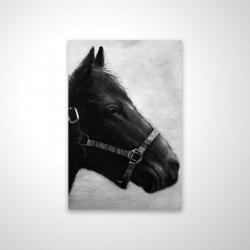 Magnetic 20 x 30 - 3D - Gallopin the horse