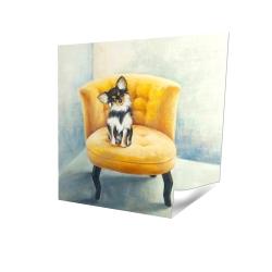 Chihuahua à poil long sur fauteuil jaune