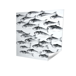 Gray school of fish