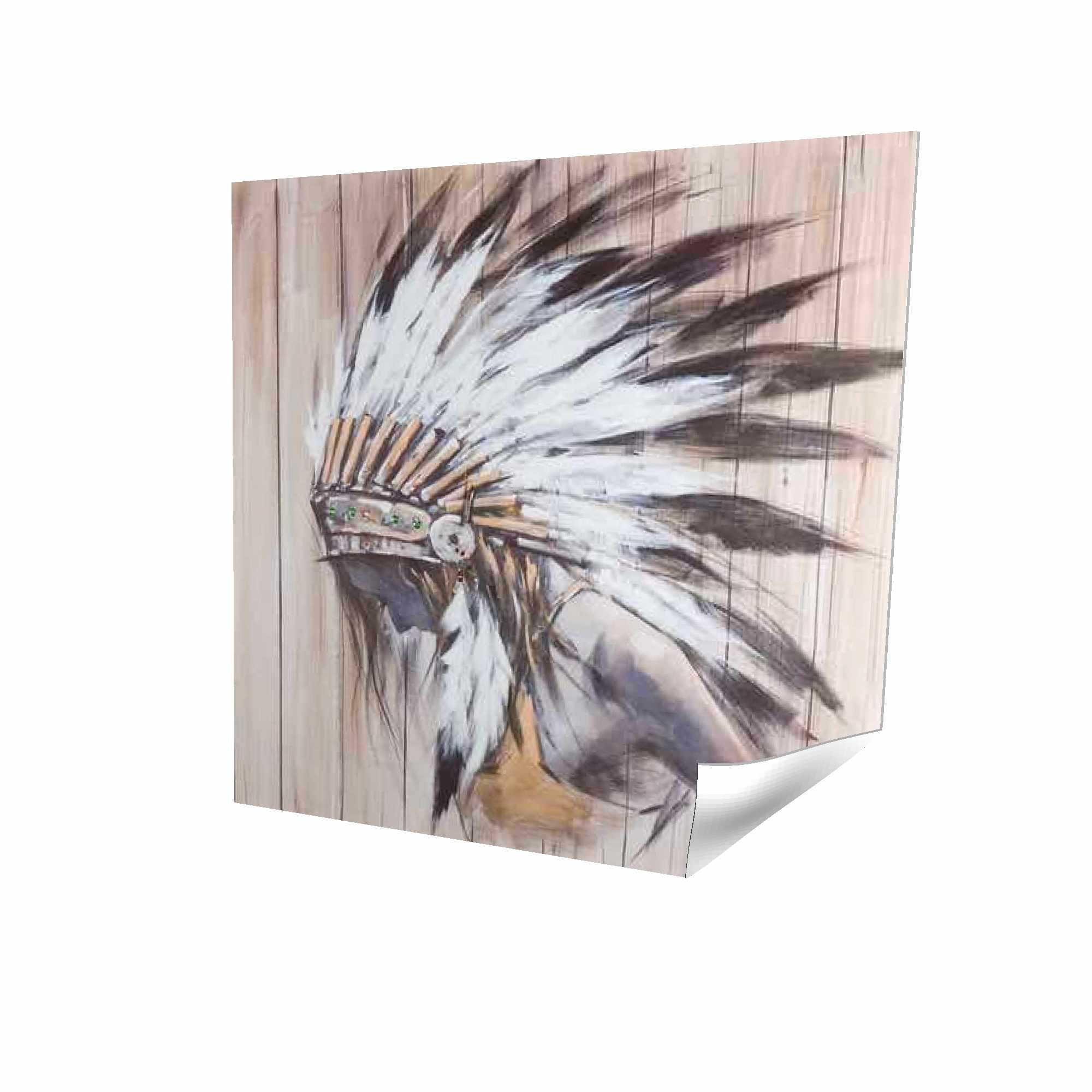 Poster 16 x 16 - 3D - Indian with feathers