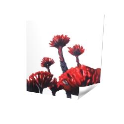 Fleurs tropicales rouge