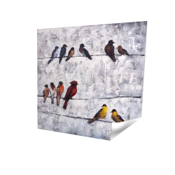Poster 16 x 16 - 3D - Colorful birds on branches