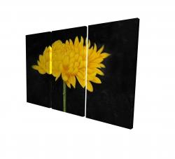 Canvas 24 x 36 - 3D - Chrysanthemum