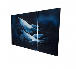 Canvas 24 x 36 - 3D - Two swimming dolphins