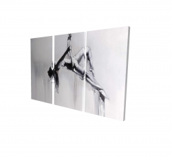 Canvas 24 x 36 - 3D - Dancer on aerial contortion