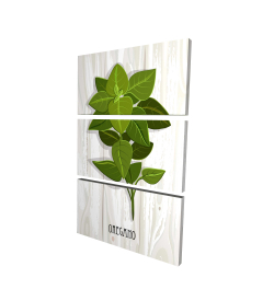 Canvas 24 x 36 - 3D - Oregano on wood