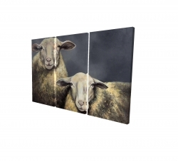 Canvas 24 x 36 - 3D - Two sheeps