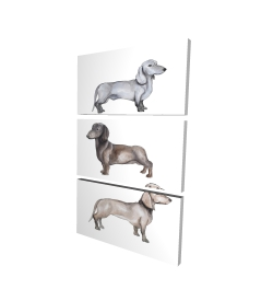 Canvas 24 x 36 - 3D - Dachshund dogs