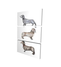 Canvas 24 x 36 - 3D - Small dachshund dog