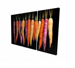 Canvas 24 x 36 - 3D - Carrots varieties
