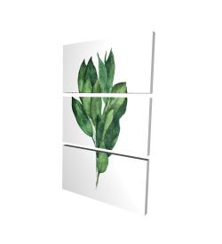 Canvas 24 x 36 - 3D - Bay leaves bundle